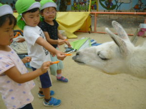 1日動物園